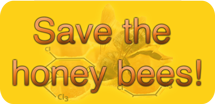 Save-honey-bees-pan-website small